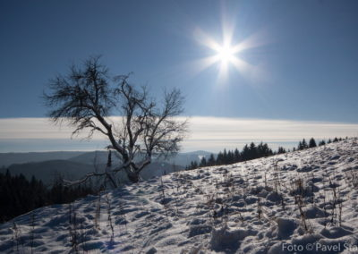 Zima v Beskydech je krásná