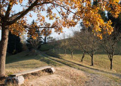 Podzim v Beskydech