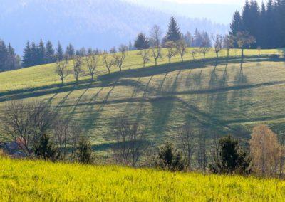 Krajina v Beskydech