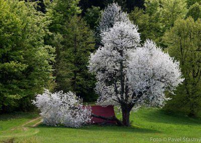 Jarní Beskydy